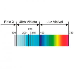 Luz Ultra